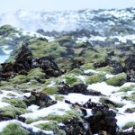 """""""Moss Def"""" Reykjavik, Iceland"""